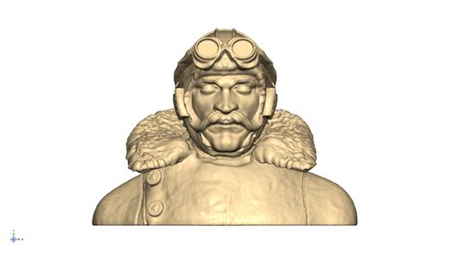 1102 WW1 Moustached pilot bust
